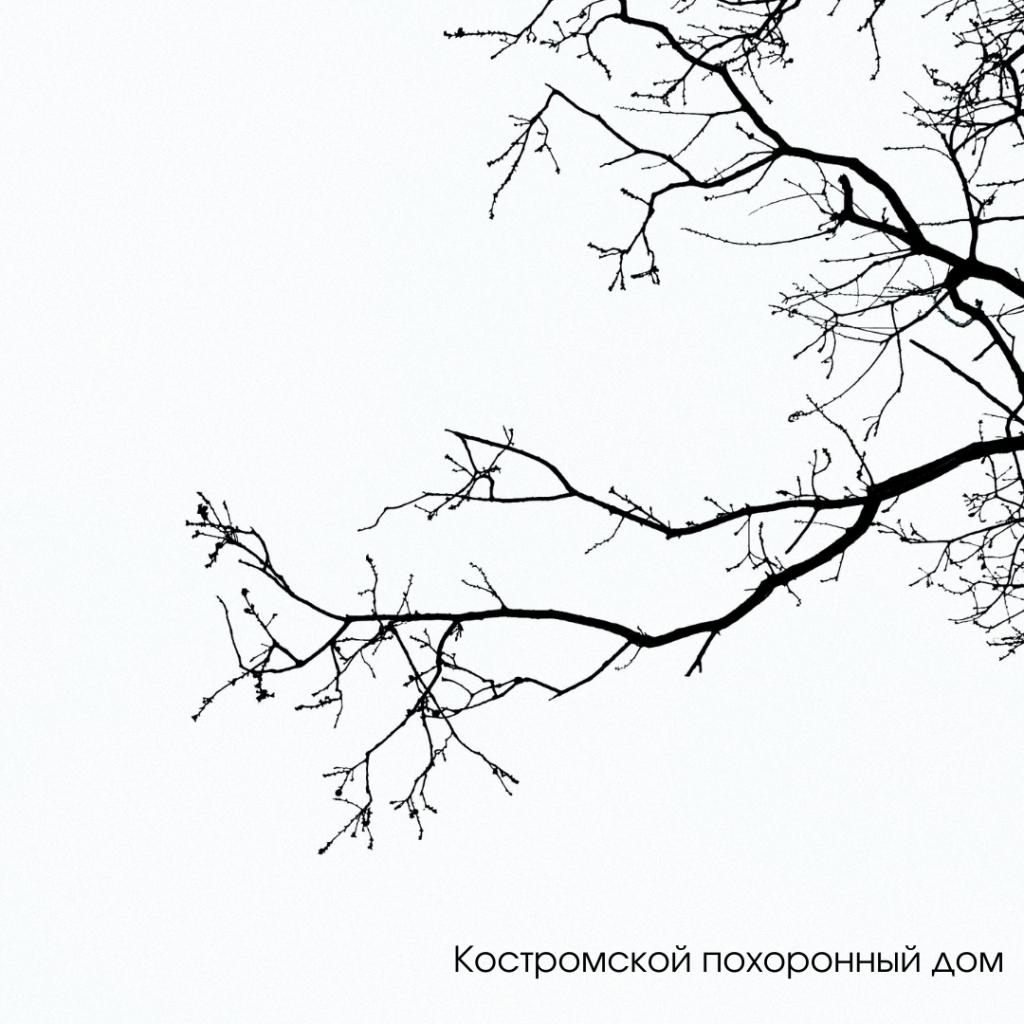 О компании Костромской похоронный дом